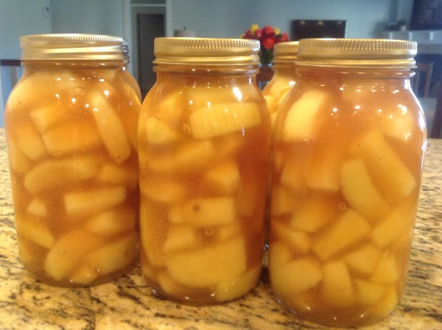 Freezing & Canning Apples to Preserve
